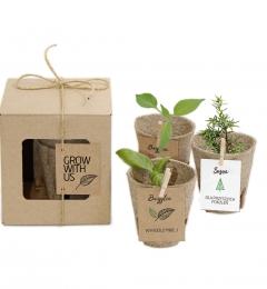 zestaw do sadzenia
