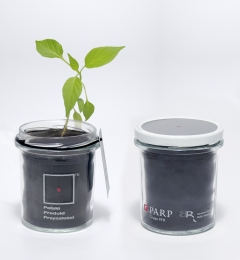 Grow kit Tipu - gadżet eko