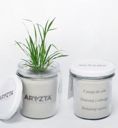 Aryzta7